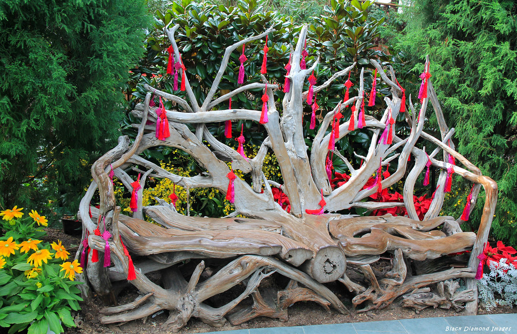driftwood seat sculpture flower dome gardens by the bay singapore by black