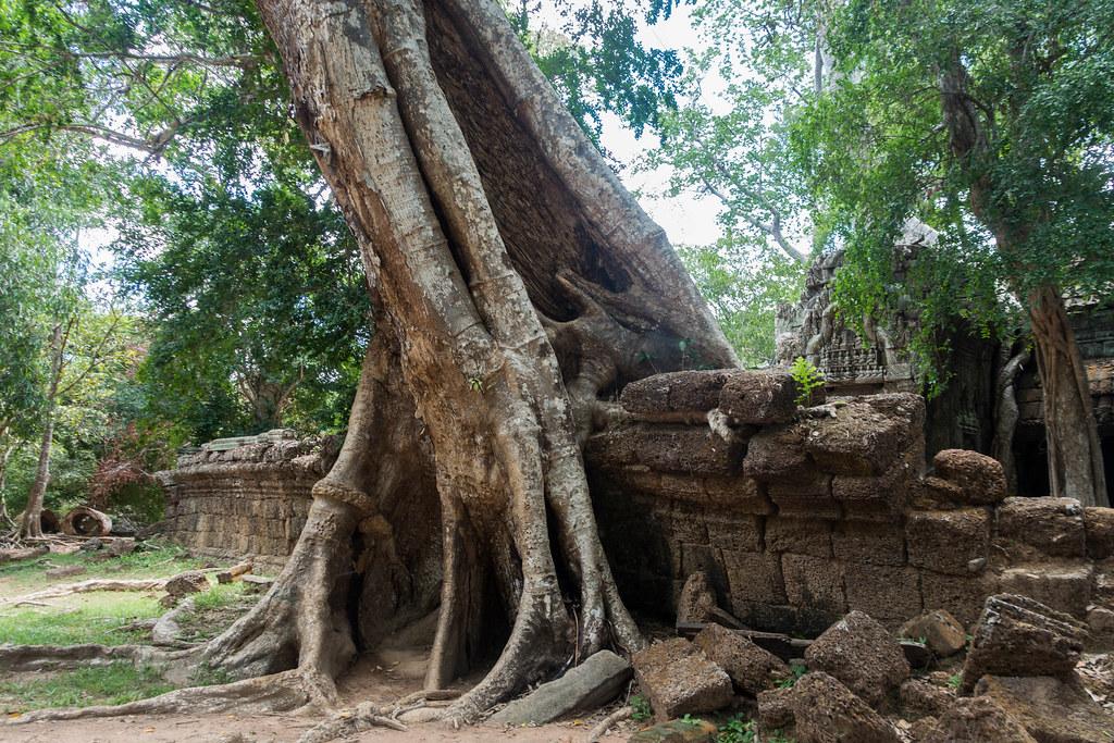 Cambodia-02181-2