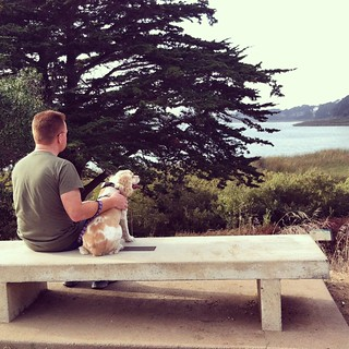#dogstagram Sitting pretty. Quick break from our walk around Lake Merced | by queenkv