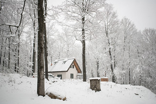 Snowy Cottage & Homestead | by goingslowly