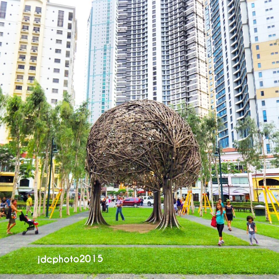The Tree - the famous tree in BGC @bonifacioglobalcity.  WHERE: Burgos Circle, Forbes Town Center, Bonifacio Global City, #Taguig City 2015  #JDCphoto #exploreBGC