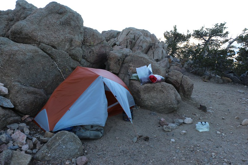 My tent in the early morning at Limber Pine Bench as I prepare to pack up
