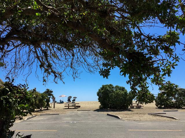 Doheny Beach, Site 43, California
