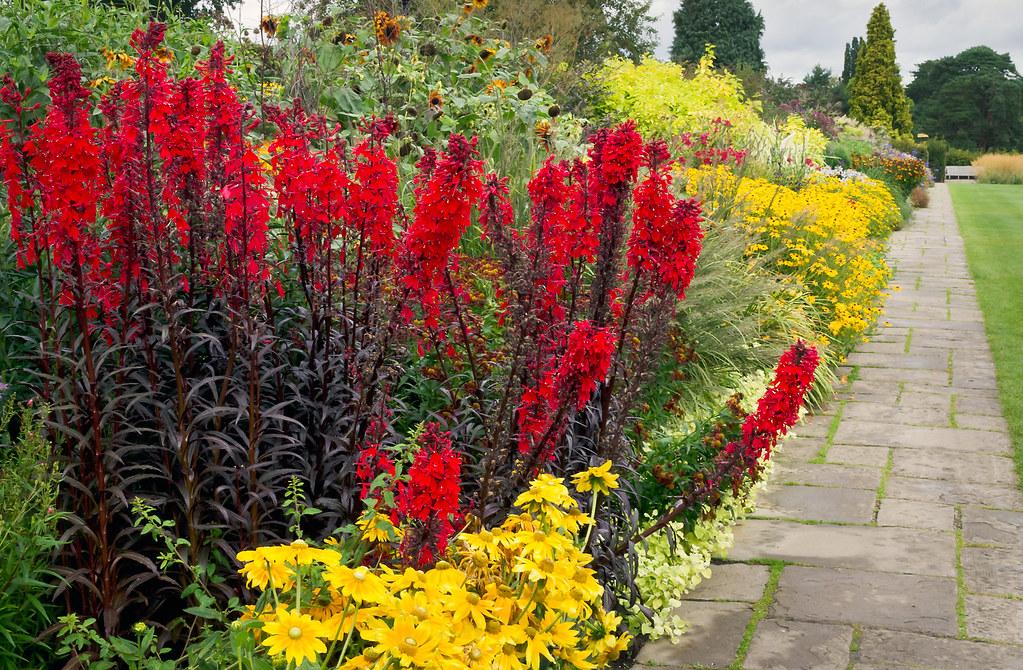 ... Last Of The Summer Flowers, Wisley Gardens, Surrey, UK | English Flower  Borders