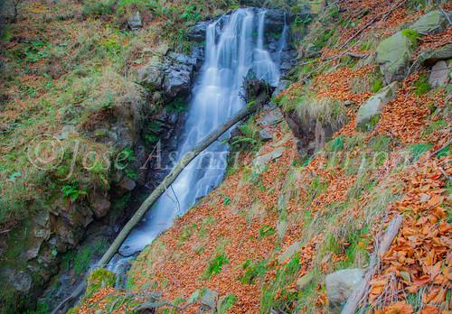 Parque natural de Gorbeia #DePaseoConLarri #Flickr      -2034