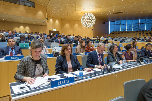Intergovernmental Committee on Intellectual Property and Genetic Resources, Traditional Knowledge and Folklore | by WIPO | OMPI