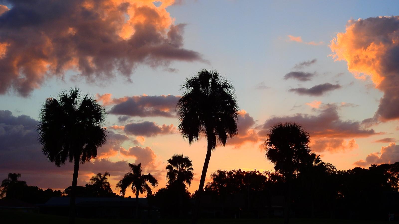 3 November Sunset