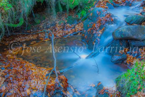 Parque Natural de Gorbeia #DePaseoConLarri  #Flickr      -2832