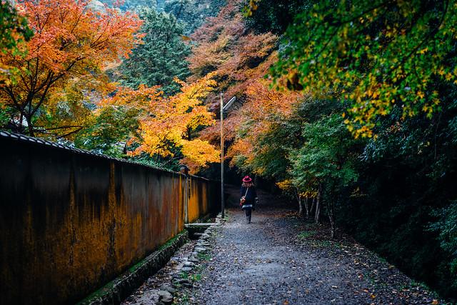 Kyoto_Nanzenji_99