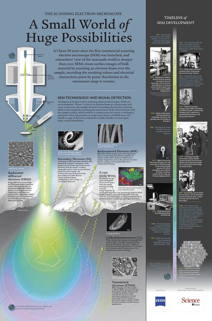 Science Poster The Scanning Electron Microscope