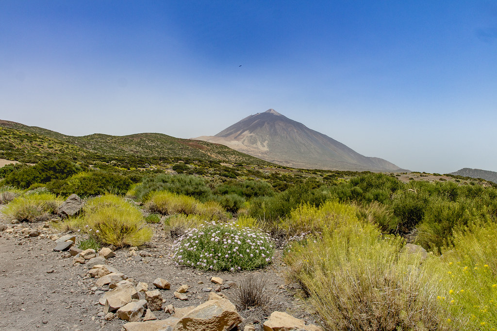 Teide landscape volcano - Tenerife