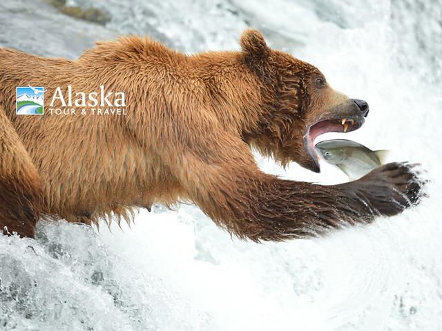 2016 Alaska Photo Contest