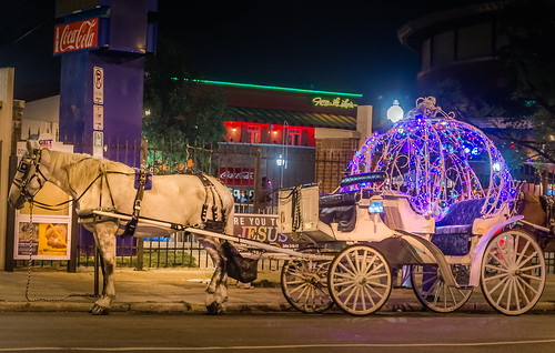 INCIDENTS | The Partnership to Ban Horse Carriages