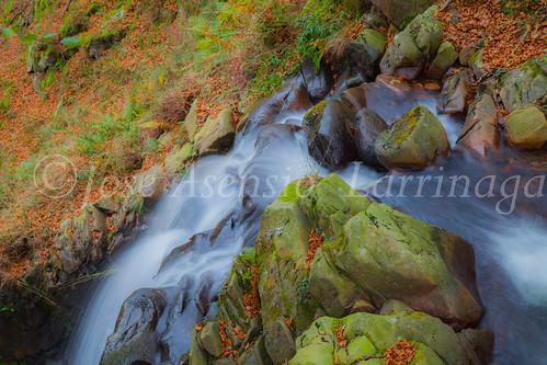 Parque natural de Gorbeia #DePaseoConLarri #Flickr      -2027