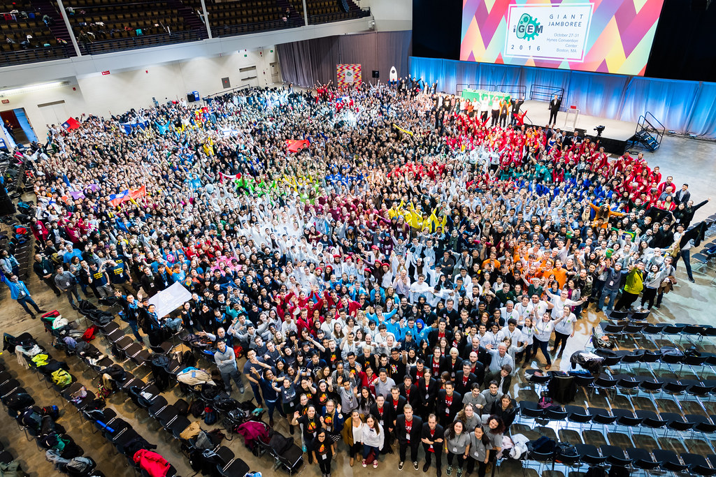 1743_8328 (2016 iGEM From Above)