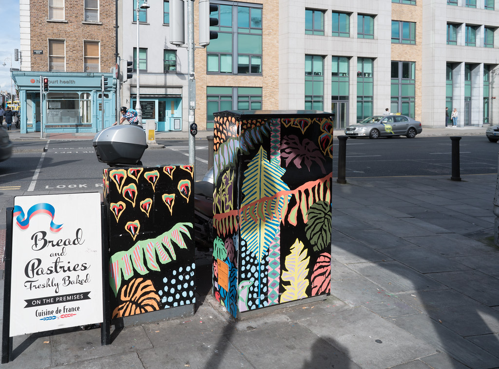 URBAN JUNGLE BY SIOFRA MURDOCK [DUBLIN CANVAS PAINT A BOX PROGRAMME] A-121547