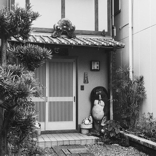 Tanuki is waiting for you… #tanuki #japantrip #frontporch... | by tiinateaspoon