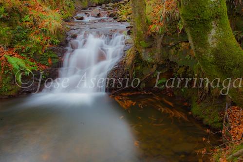 Parque natural de Gorbeia #DePaseoConLarri #Flickr      -2007