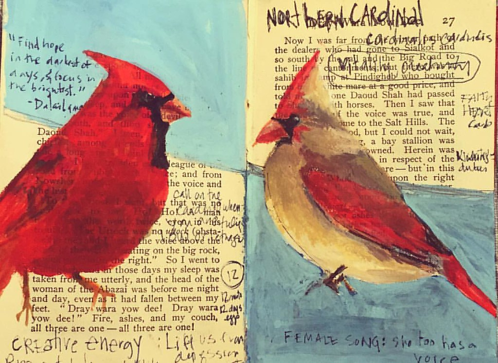 In My Bird Book The Northern Cardinal Male And Female He Flickr