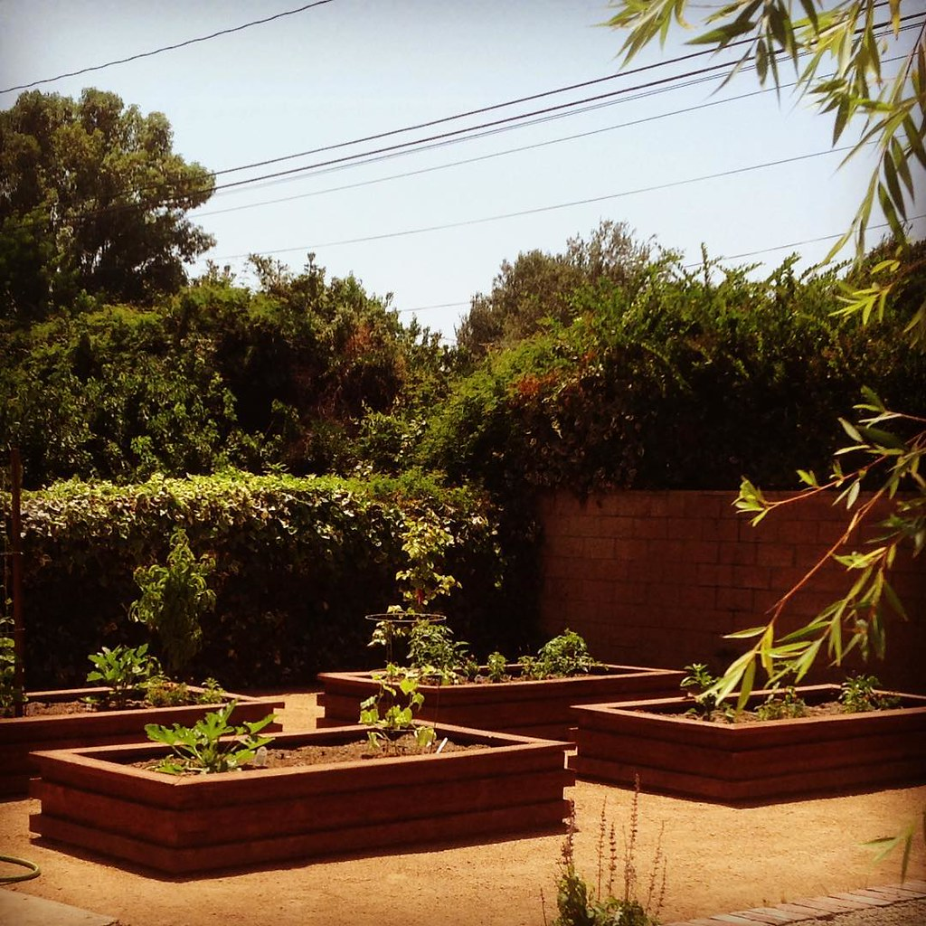 Custom built raised garden beds with decomposed granite pa… | Flickr