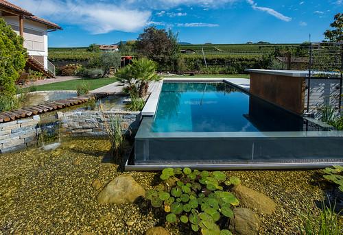 f milla bluebase base2 bio schwimmbad teich berlaufrinne flickr. Black Bedroom Furniture Sets. Home Design Ideas