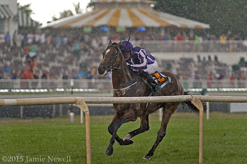 Highland Reel wins the Secretariat Stakes | by creepy_coyote