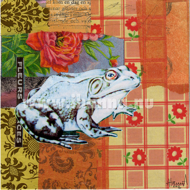 Frog Collage by iHanna: Pick em - art by iHanna aka Hanna Andersson, Sweden
