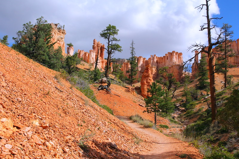 IMG_5299 Fairyland Trail, Bryce Canyon National Park