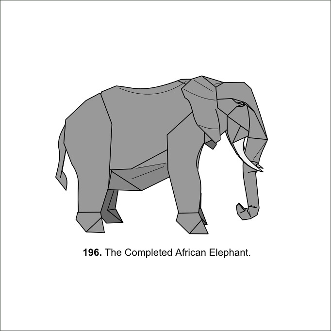 African Elephant Diagrams