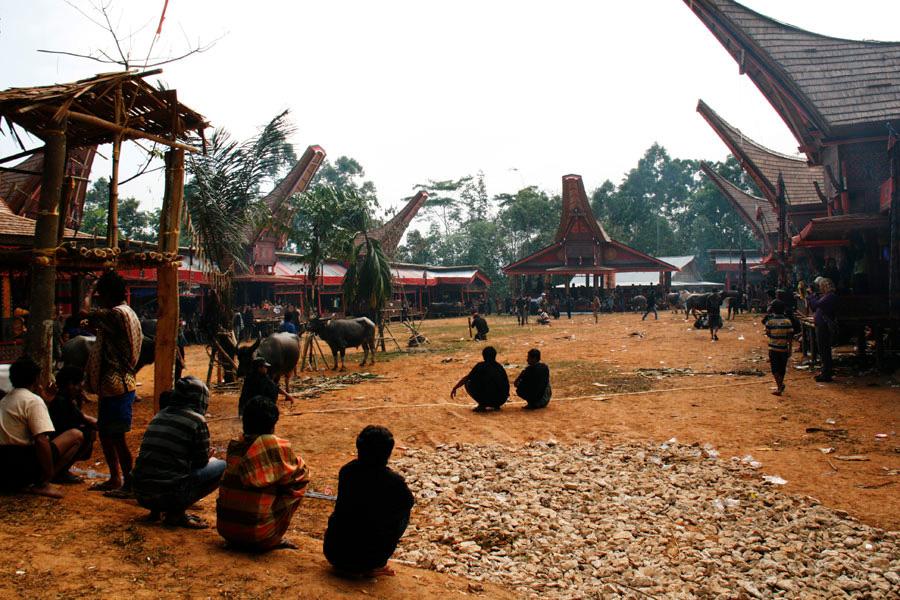 Tana Toraja hautajaiset