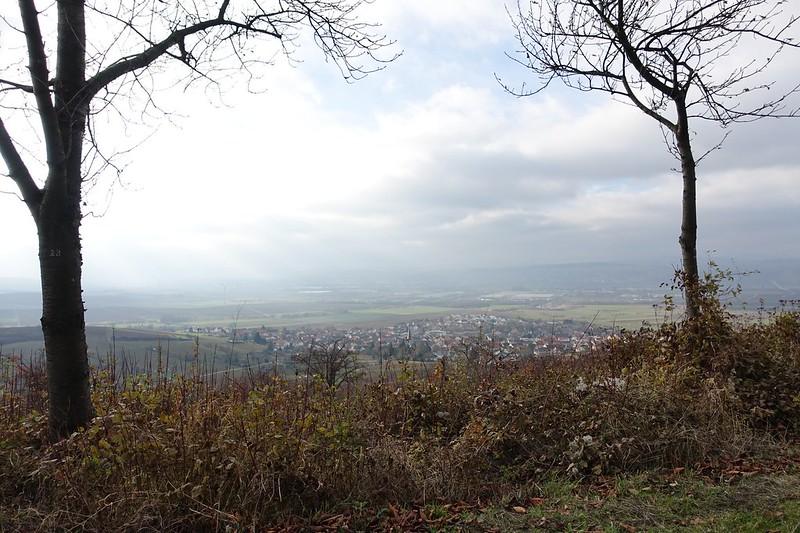 Am Hörnchen: Blick auf Dromersheim