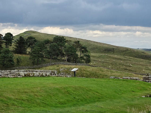 Housesteads 34