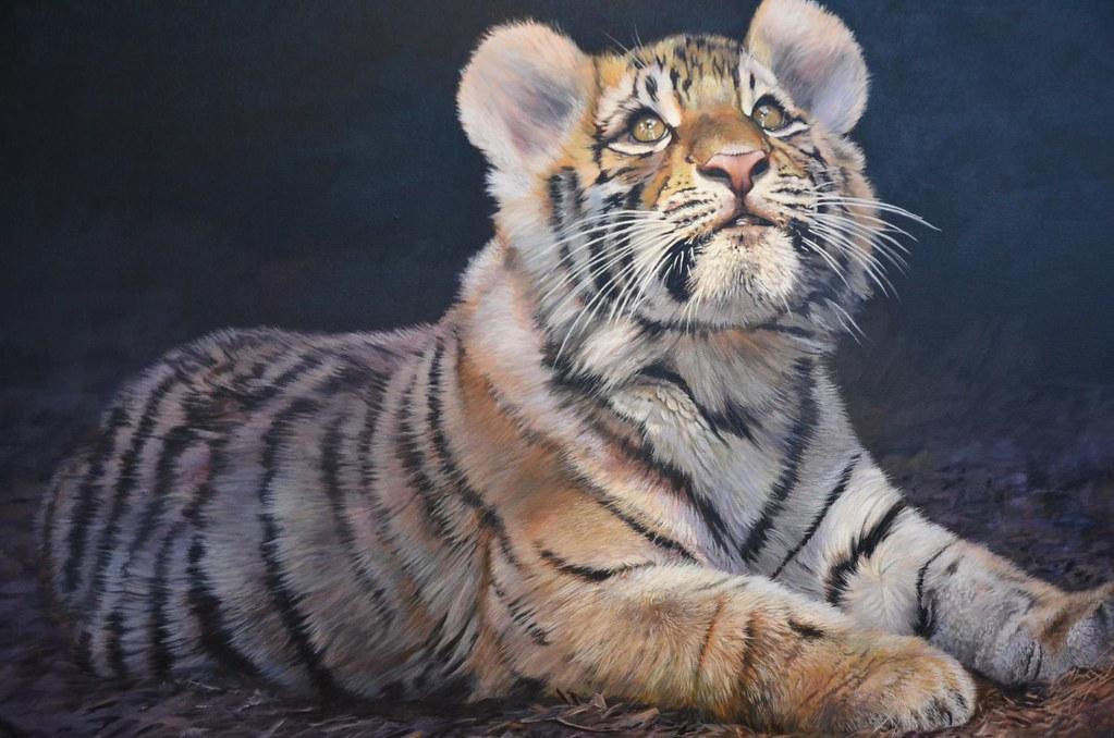 Tiger Mist (@tigermistonline) - Twitter