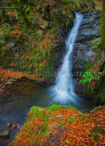 Parque natural de Gorbeia #DePaseoConLarri #Flickr      -2046