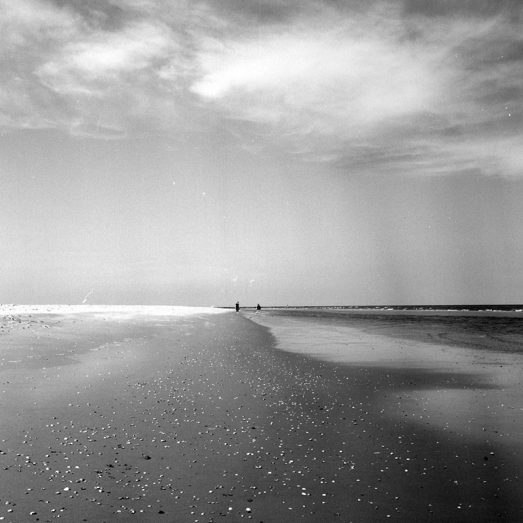 Texel Island