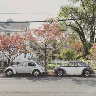 A pair of bugs #vwbeetle #vw #aircooled | by JPdG photoGRAPHY