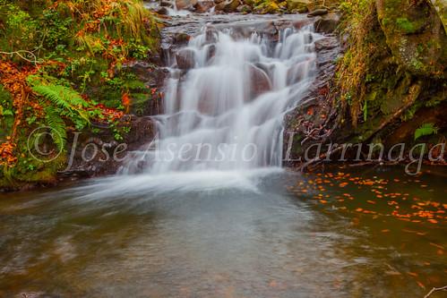 Parque natural de Gorbeia #DePaseoConLarri #Flickr      -2014