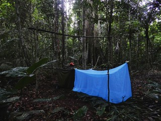 Survival sleep in Madidi National Park - Amazon forest - Bolivia | by pacoalfonso
