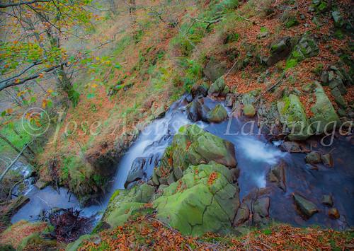 Parque natural de Gorbeia #DePaseoConLarri #Flickr      -2028