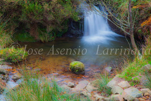 Parque natural de Gorbeia #DePaseoConLarri #Flickr      -2049