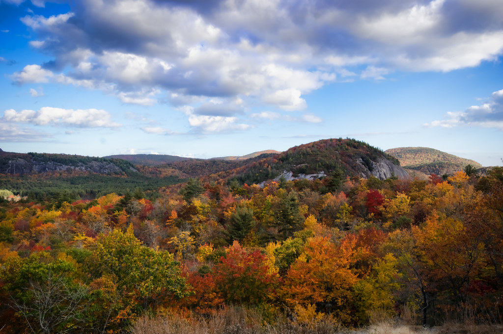 View from Salt Rock