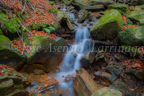 Parque natural de Gorbeia #DePaseoConLarri #Flickr      -2065