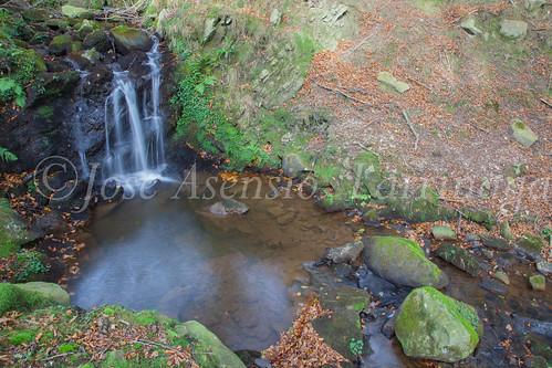Parque Natural de #Gorbeia #DePaseoConLarri #Flickr      -1478