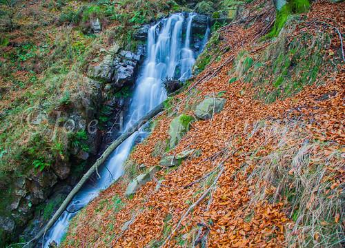 Parque natural de Gorbeia #DePaseoConLarri #Flickr      -2036