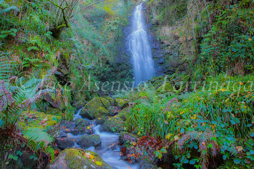 Parque Natural de Gorbeia #DePaseoConLarri #Flickr      -2823