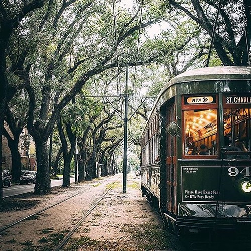 Rolling into that Monday-after-Fall Break like:   But seriously - the St. Charles Streetcar line runs directly from the top of our campus, and is a student favorite for getting around the city!  #onlyattulane #onlyinneworleans | by OnlyAtTulane