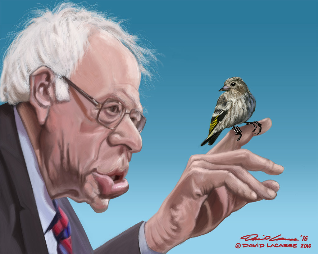 bernie sanders bernie bird with all the email this and g flickr