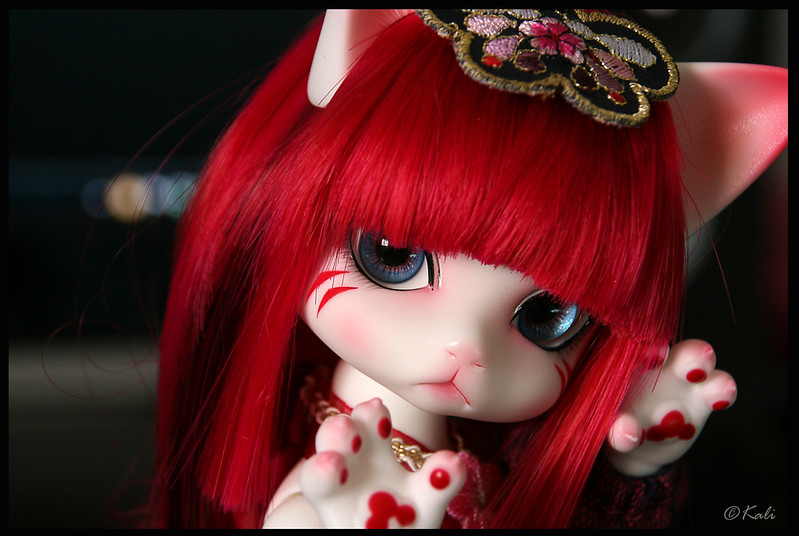 [Zuzu Delf Persi (LUTS)] Perle, Rubis & Milady (chats-chats) - Page 2 30359093480_60c06967c4_c