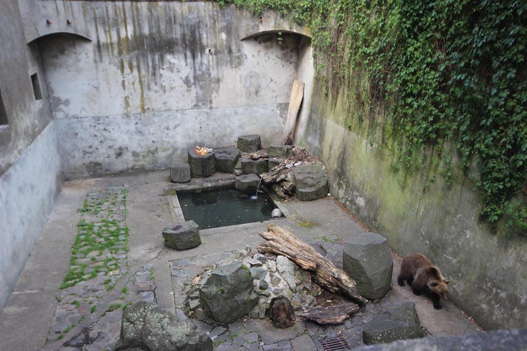 Bear Moat, Český Krumlov State Castle