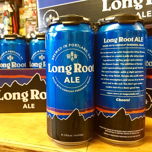Long Root Ale, a new collaboration from @hopworksbeer & @patagoniaprovisions brewed with Kernza Perennial Grain. #patagonia #patagoniabeer #patagoniaprovisions #hopworksurbanbrewery #hopworks #hopworksbeer #hub #kernza #kernzagrain #kernzaperennialgrain #